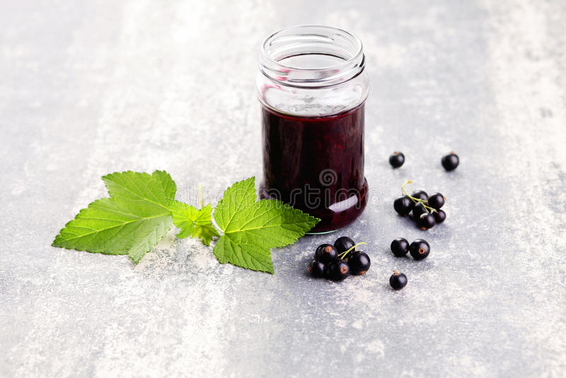 Blackcurrant jam stock foto