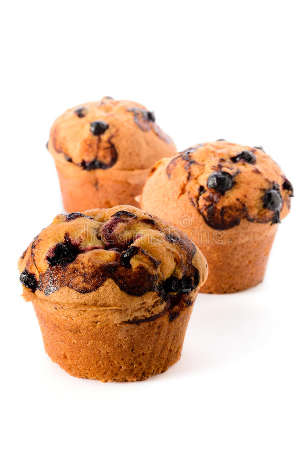 Blackcurrant muffins obrazy royalty free