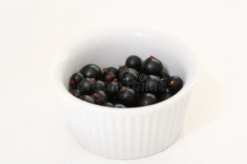 blackcurrants стоковая фотография