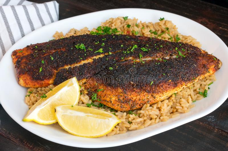 Cajun-style Blackened Red Snapper on Dirty Rice stock photo