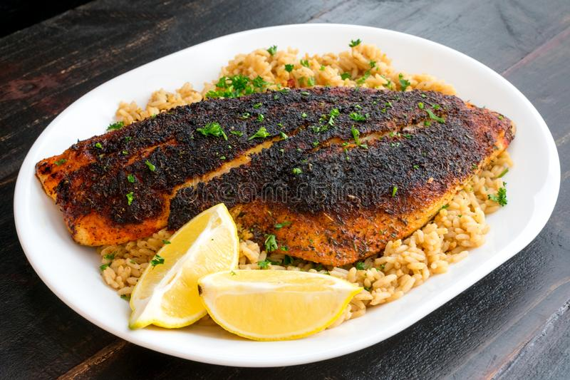 Cajun-style Blackened Red Snapper on Dirty Rice royalty free stock photos