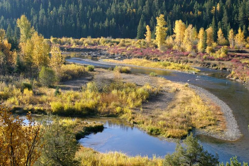 Blackfoot Fluss Floodplain-Fallfarben, Montana, USA lizenzfreies stockfoto