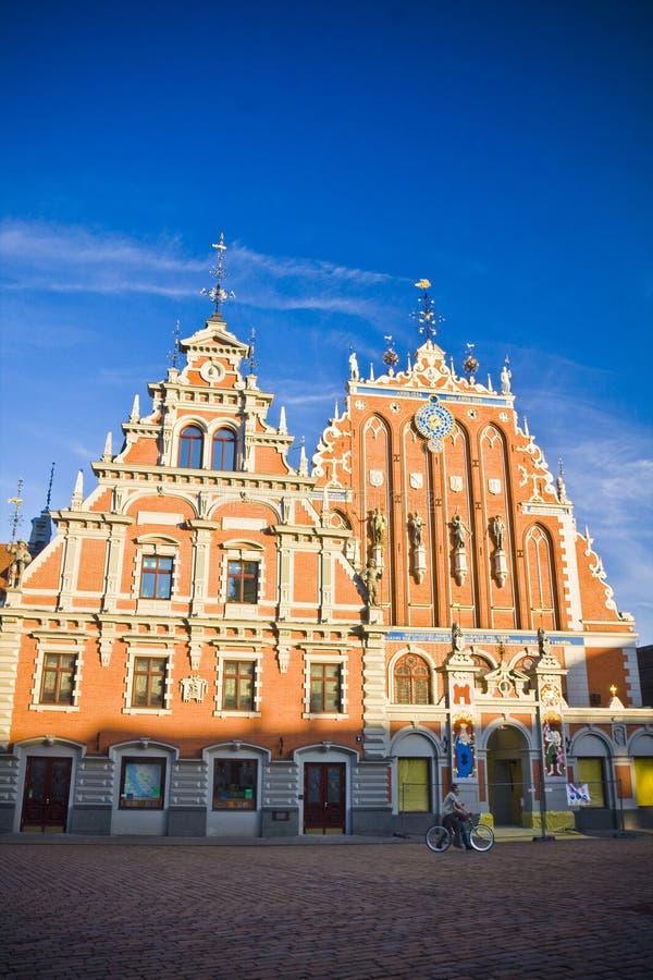 Free Blackheads In Riga. Royalty Free Stock Image - 48533496