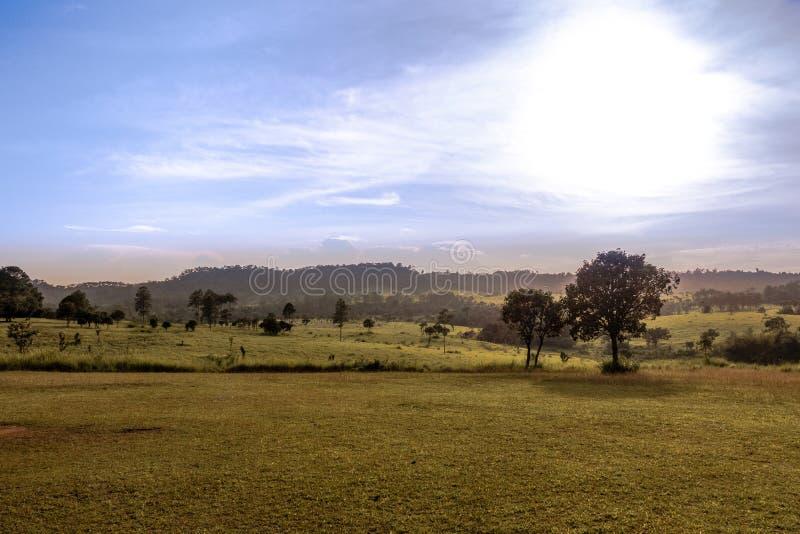 Blacklit krajobraz fotografia stock