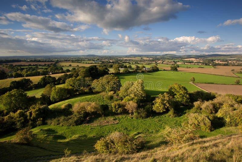 Blackmoredal, Dorset, het UK stock afbeeldingen
