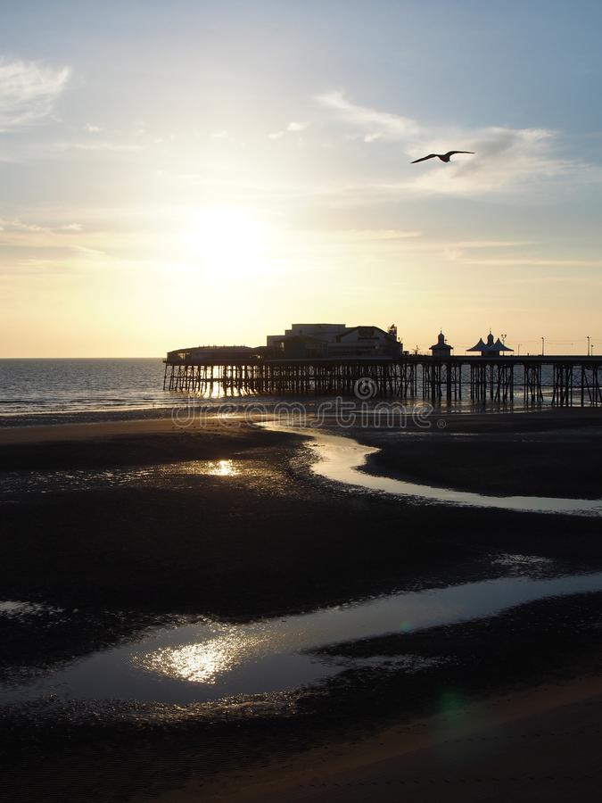 Blackpool północny molo zmierzch z jaskrawym wieczór światłem słonecznym odbijał w wodzie i seagull lataniu w niebieskim niebie zdjęcia stock