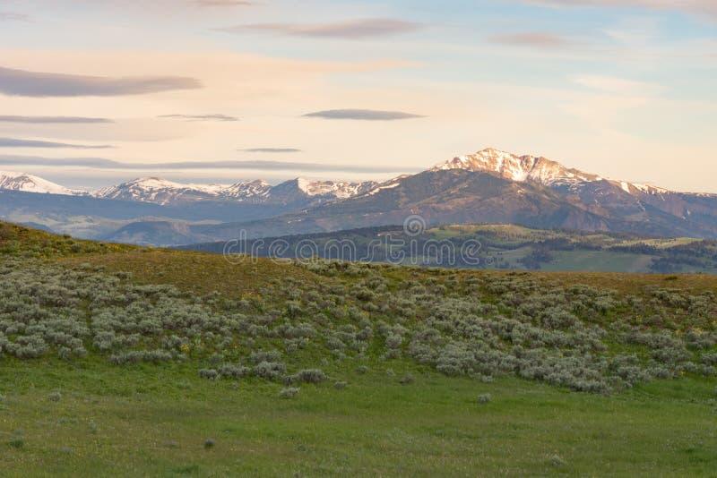 Blacktail Plateau royalty free stock photo