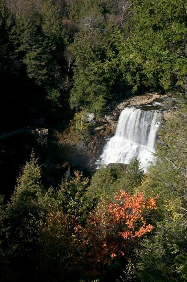 Blackwater Falls stock photo