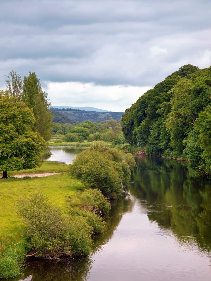 Blackwater-Fluss lizenzfreie stockfotografie