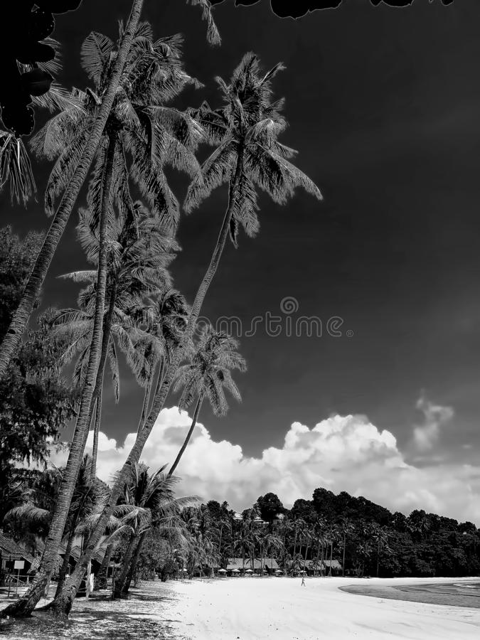 Black and white Photos at Batam Bintan Islands. Blackwhite Photos at Batam Bintan Islands stock photography