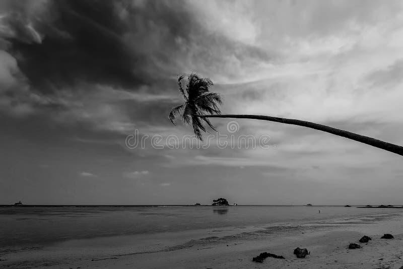 Blackwhite Photos at Batam Bintan Islands. Indonesia royalty free stock photos