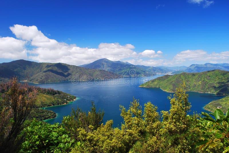 Blackwood-Schacht, Marlborough, NZ lizenzfreie stockfotografie
