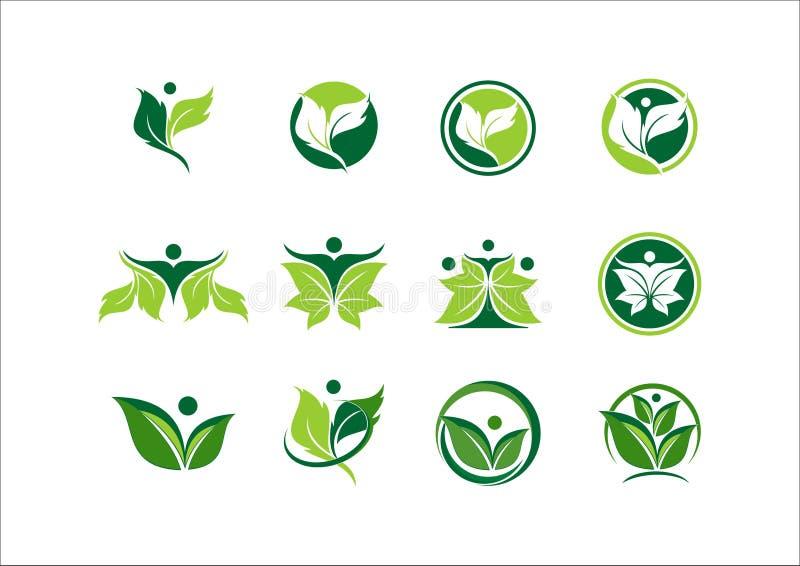 Blad, ecologie, installatie, embleem, mensen, groene wellness, aard, symbool, pictogram stock illustratie