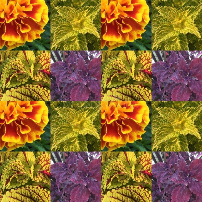 Blad en florapatroon royalty-vrije stock fotografie