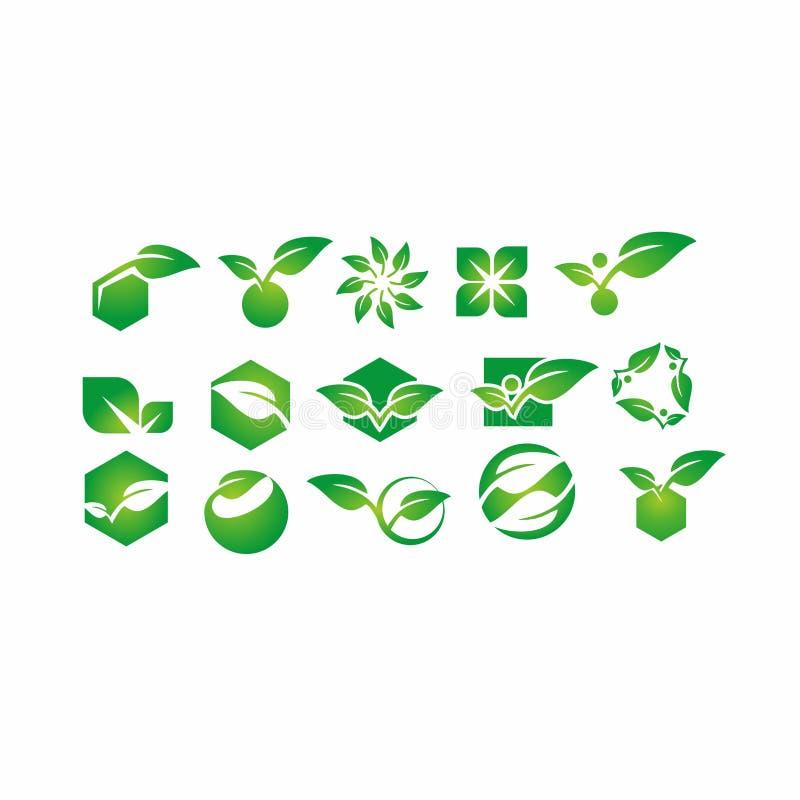 Blad växt, logo, ekologi, folk, wellness, gräsplan, sidor, uppsättning för natursymbolsymbol av designer stock illustrationer