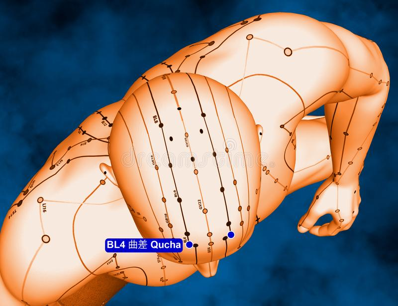 Acupuncture Point BL4 Qucha, 3D Illustration, Blue Background royalty free stock photos