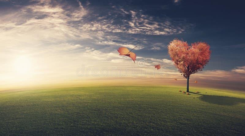 Bladeren die hart gevormde boom wegblazen stock afbeeldingen