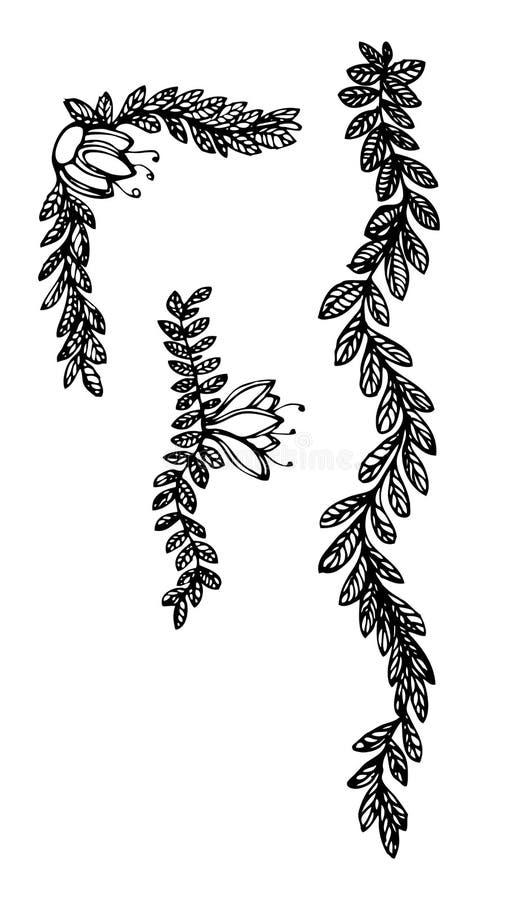 Bladeren en bloemenornamenten 2 royalty-vrije illustratie