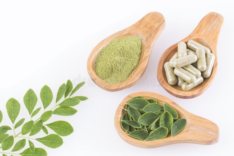 Bladeren, poeder en moringa capsules - oleifera Moringa stock foto's