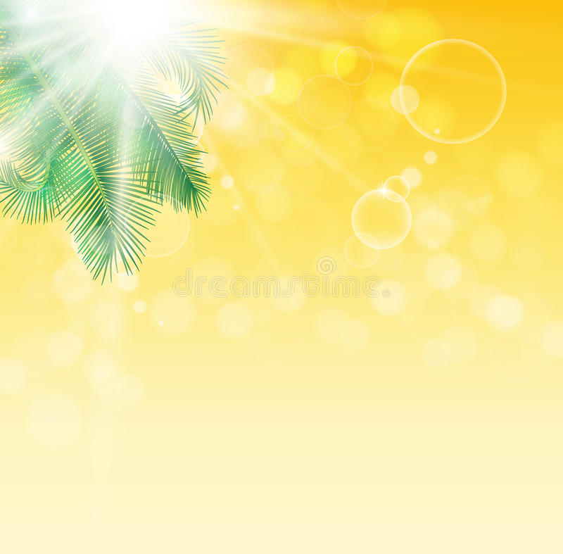 Bladeren van palm op achtergrond royalty-vrije stock afbeelding
