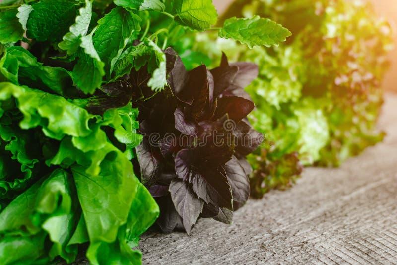 Bladeren van verse groene salade, Basilicum en Melissa op een houten lijst royalty-vrije stock foto's