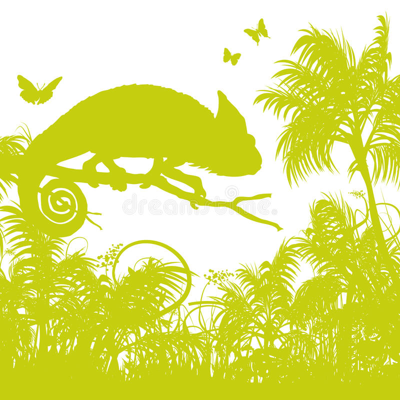 Blades of grass with chameleon. Blades of grass and palm trees with chameleon vector illustration