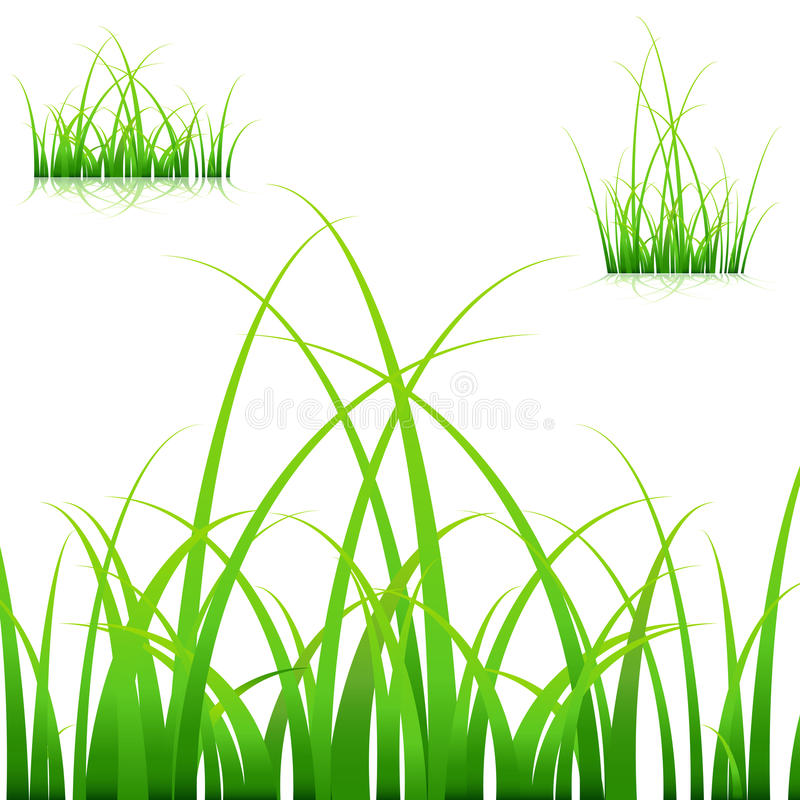 Free Blades Of Grass Stock Photography - 19301482