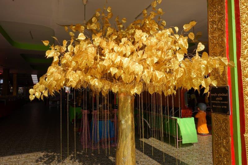 Bladguld från det Bodhi trädet som planteras i thailändska tempel royaltyfri foto