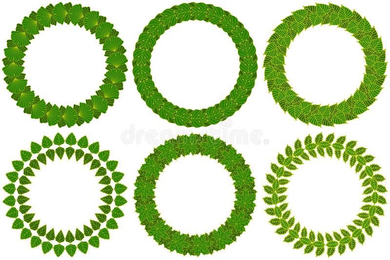 Bladig kransuppsättning Grön krans som göras av olika trädsidor stock illustrationer