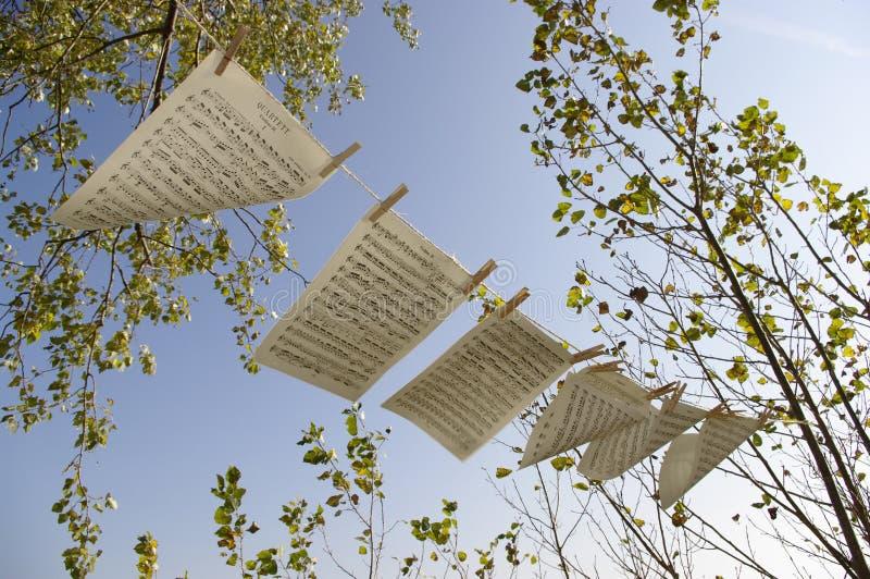 Bladmuziek in de wind royalty-vrije stock afbeeldingen