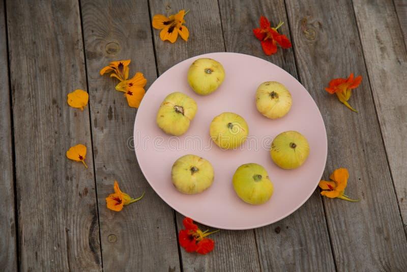 Bladożółte figi na różowią talerza z nasturcją zdjęcie stock