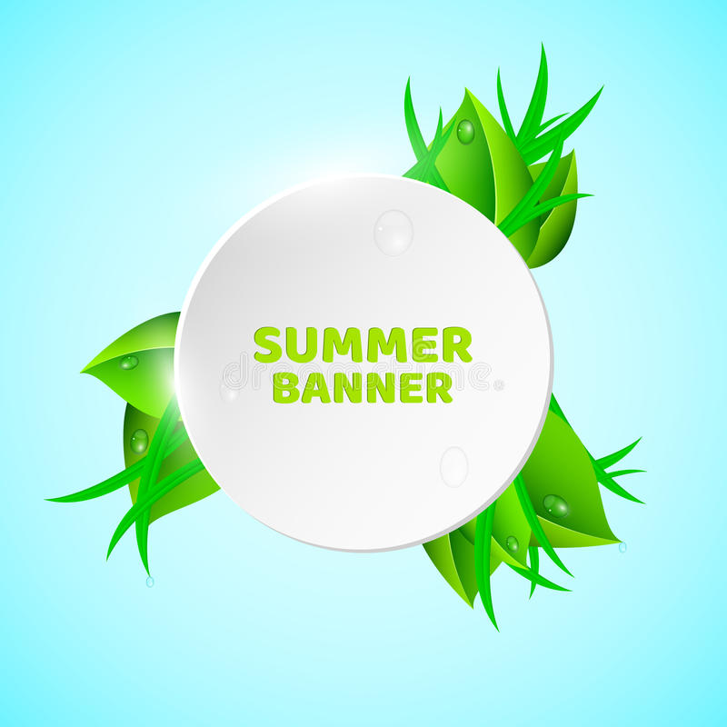 Blanc, bannière ronde de lumière dans le style d'été Feuilles et herbe fraîches Les baisses de la rosée coulent en bas des feuill illustration de vecteur