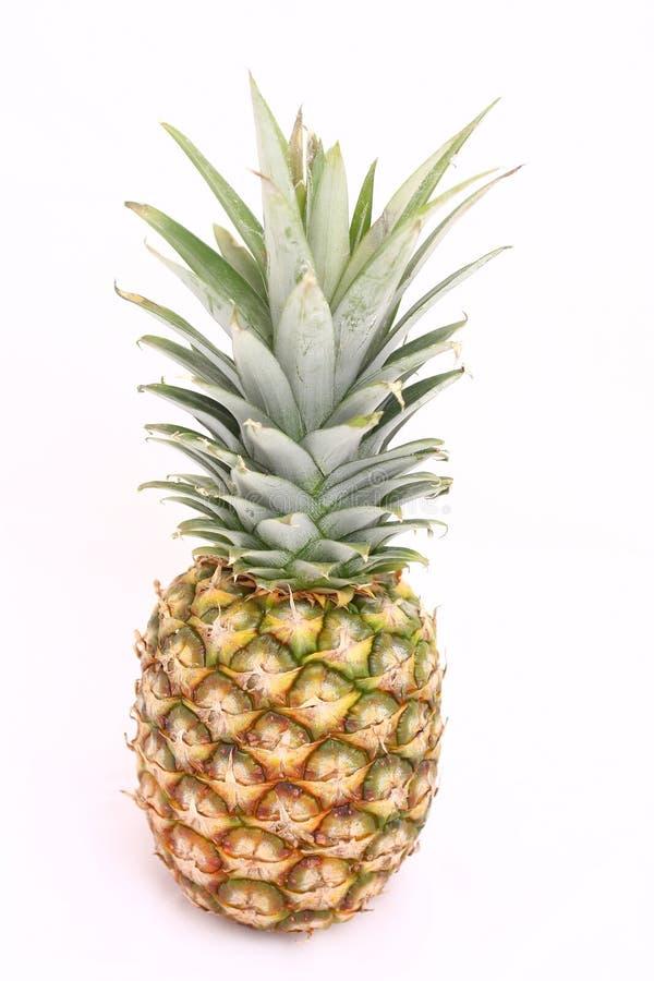 blanc d'ananas photo libre de droits