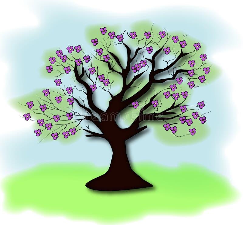 blanc d'arbre de source d'isolement par fond photo stock
