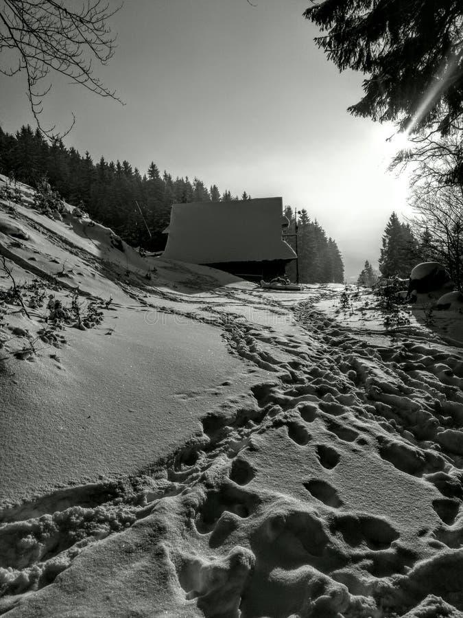 Blanc d'hiver de maison d'étape de neige image stock