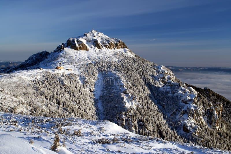 blanc de montagne image stock