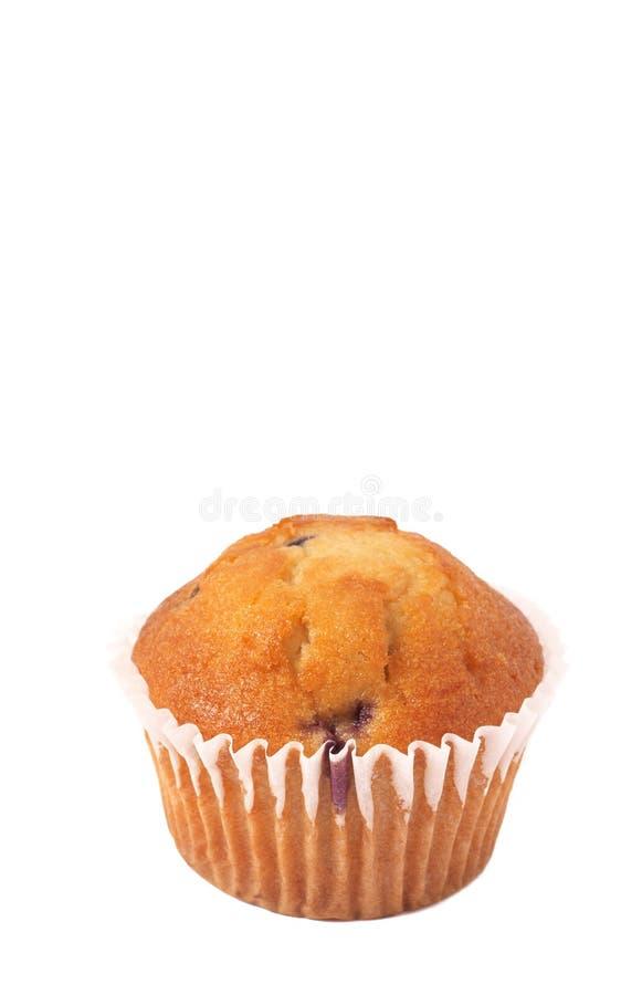 blanc de pain de myrtille image libre de droits