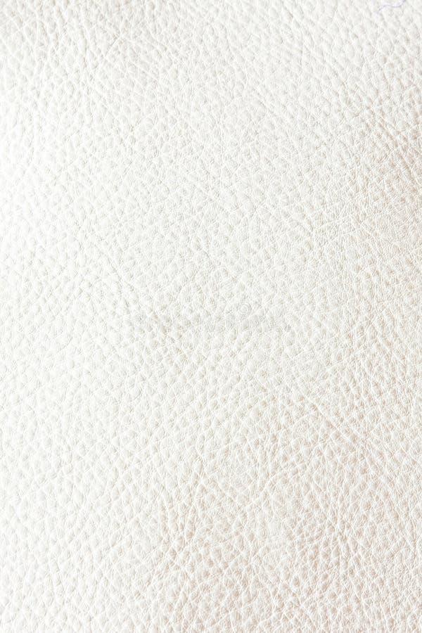 Blanc en cuir photographie stock
