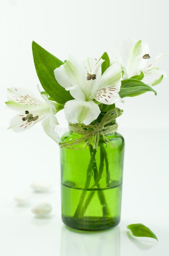 Blanc et vert images stock