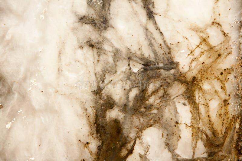 Blanc grunge et texture de fond de Brown images stock