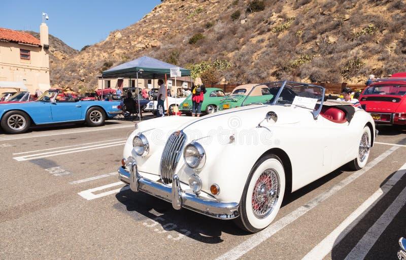 Blanc Jaguar 1956 XK 140 MC photographie stock libre de droits