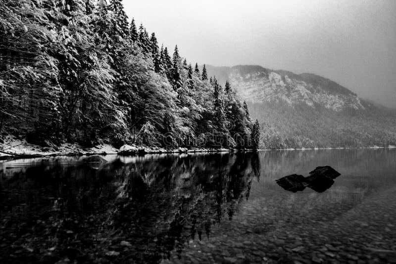 blanc noir photos stock