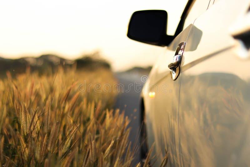 Blanc parking sur le bord de la route avec le fond de champ de tache floue photos stock