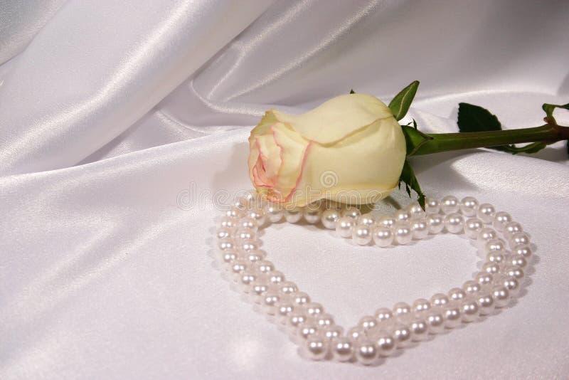 Blanc rose et perles image stock