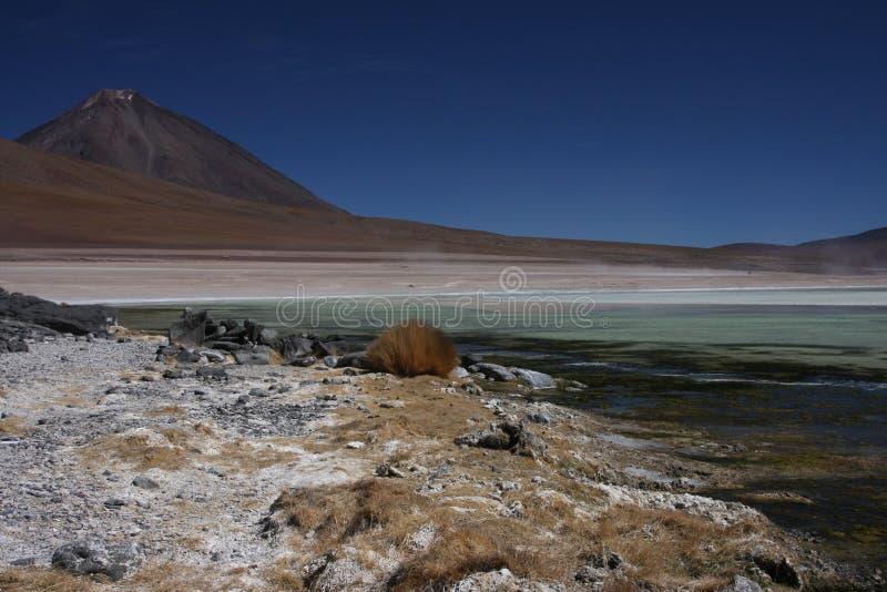 Blanca de Laguna et Licancabur photo stock