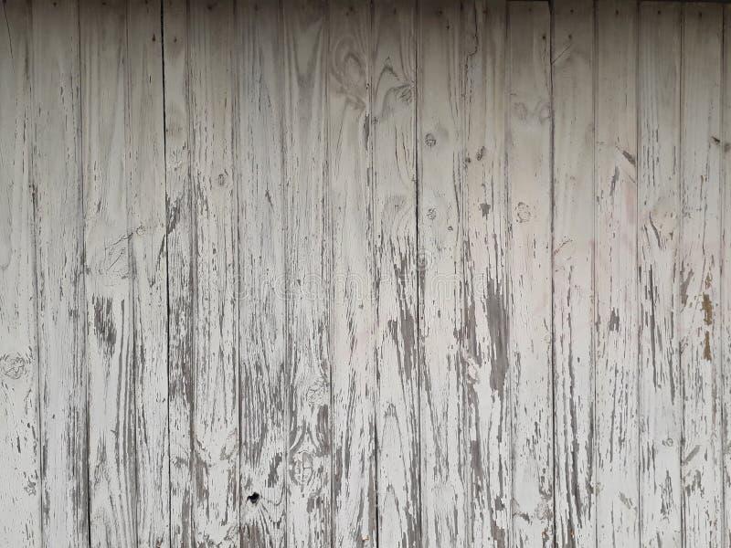 Blanca de Textura De madera/texture en bois blanche photographie stock