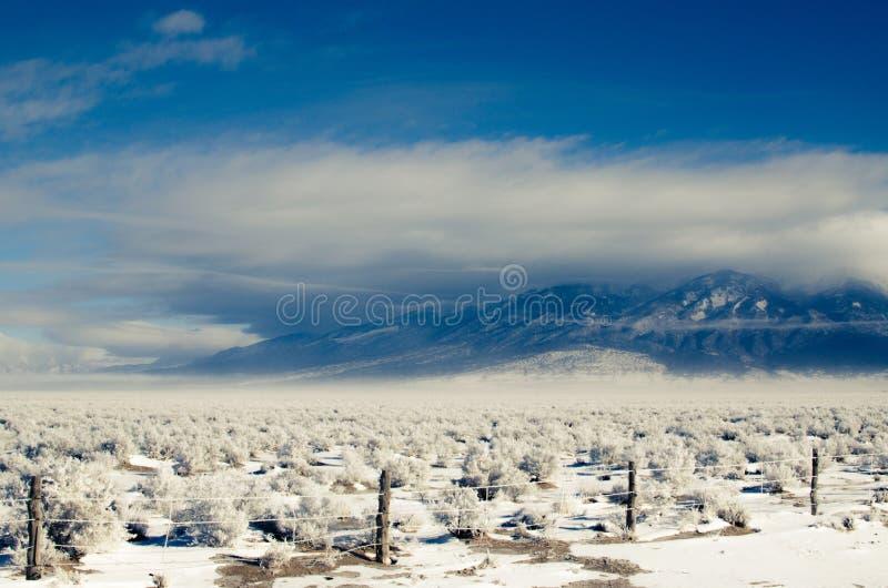 Blanca Peak i en häftig snöstorm arkivfoton