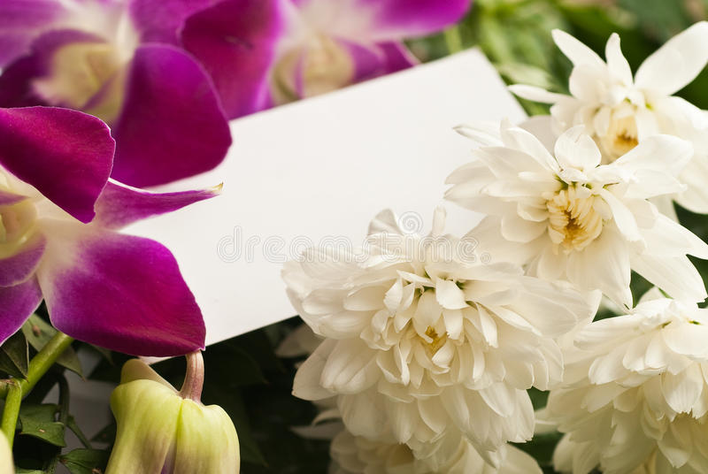 Blanch card with flowers stock photo
