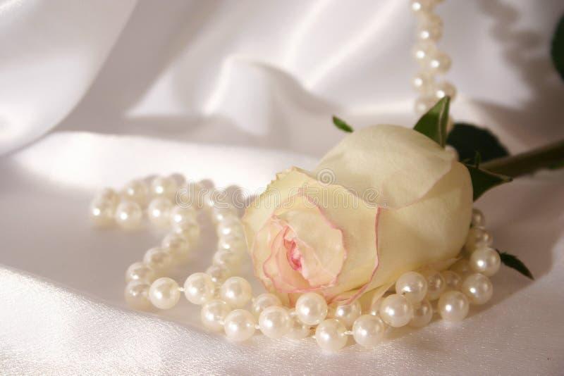 Blanco color de rosa y perlas fotografía de archivo