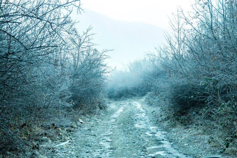 Blanco-helada cubierta sobre hierba, trenza y el camino en invierno temprano foto de archivo